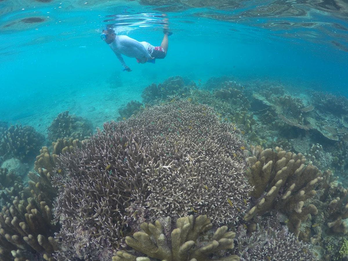Alam bawah laut Pantai Kilo Lima