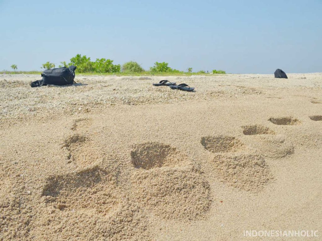 Pasir Pantai Pulau Kelor